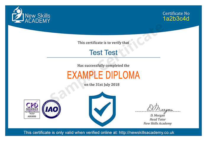 New Skills Academy sample certificate