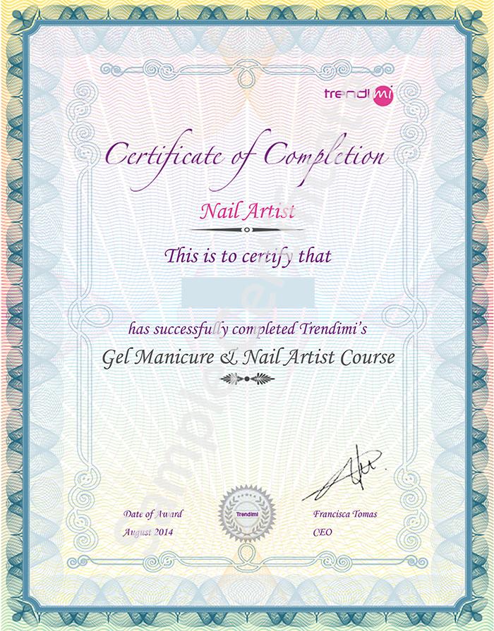 Trendimi Academy sample certificate