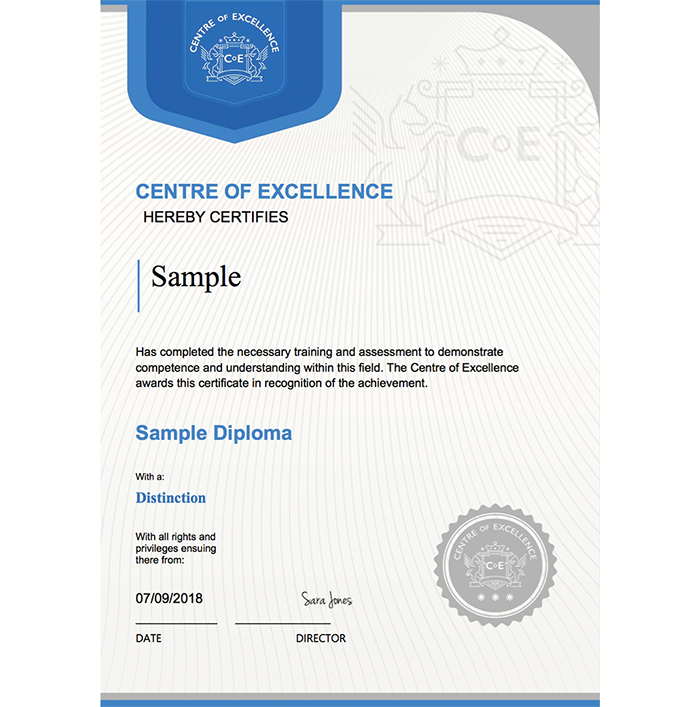 Centre of Excellence sample certificate