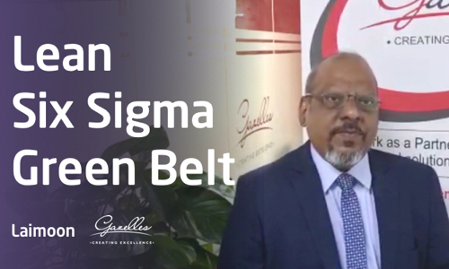 Lean Six Sigma Green Belt by Santosh G. Bhosale