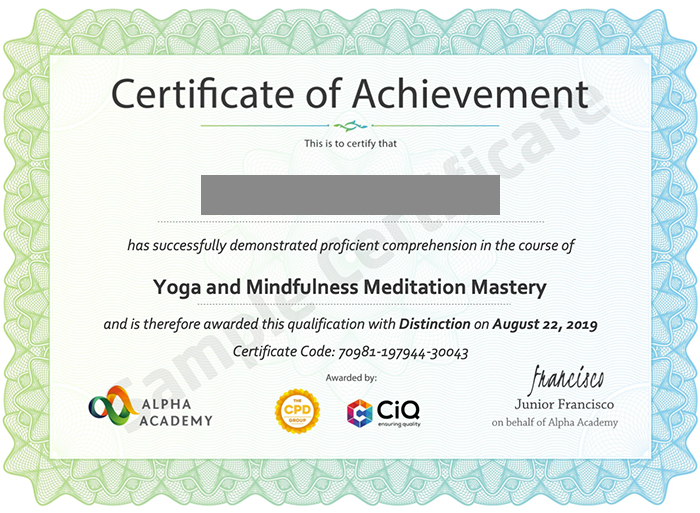 Alpha Academy sample certificate