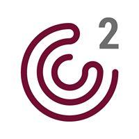 C2 Consulting