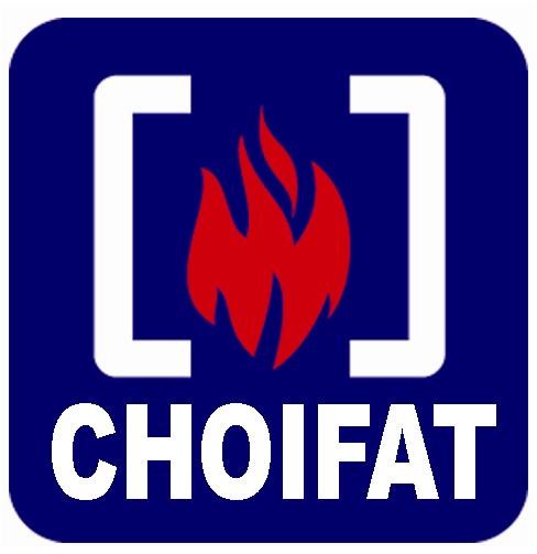 CHOIFAT SAFETY & SECURITY LLC