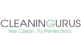 Cleaning Gurus Ltd.