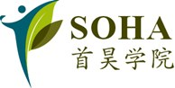 More about Soha Institute