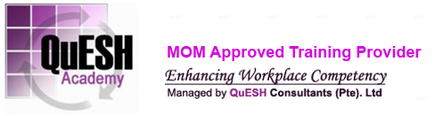 More about QuESH Academy