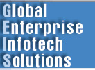 More about Global Enterprise Infotech Solutions(GEIS)