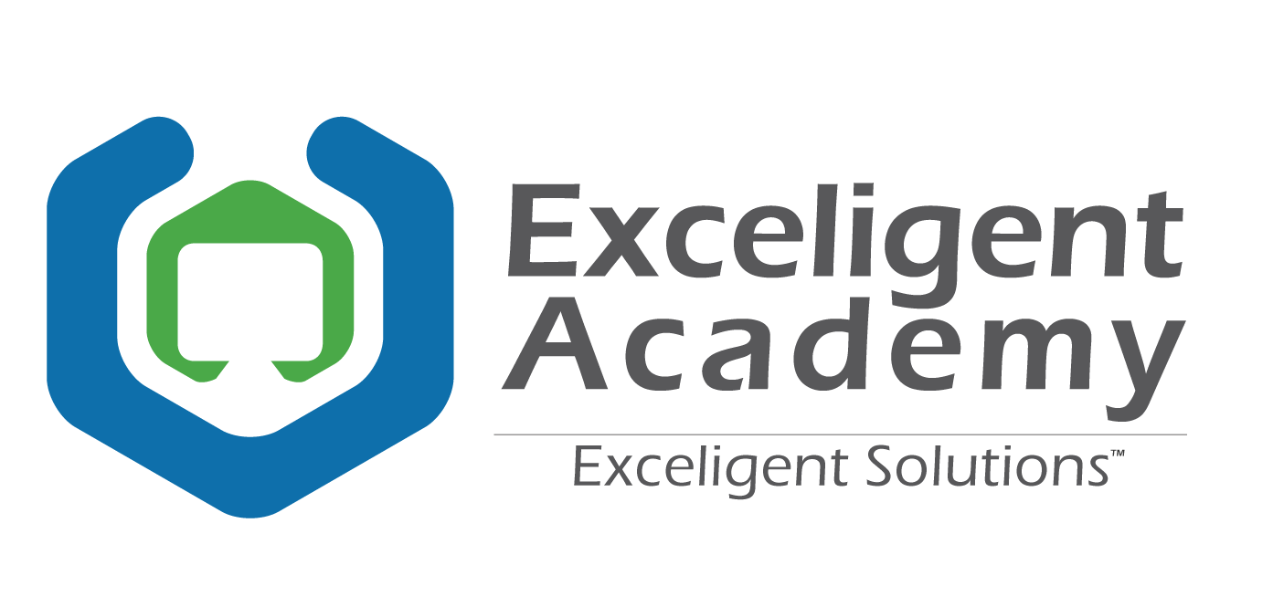 More about Exceligent Academy
