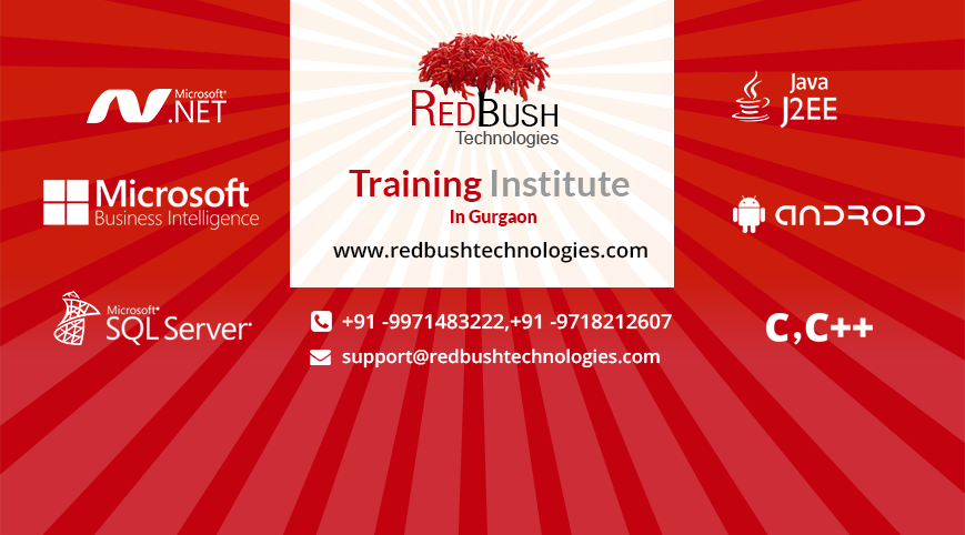 More about RedBush Technologies