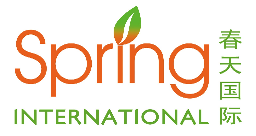 More about Spring College International