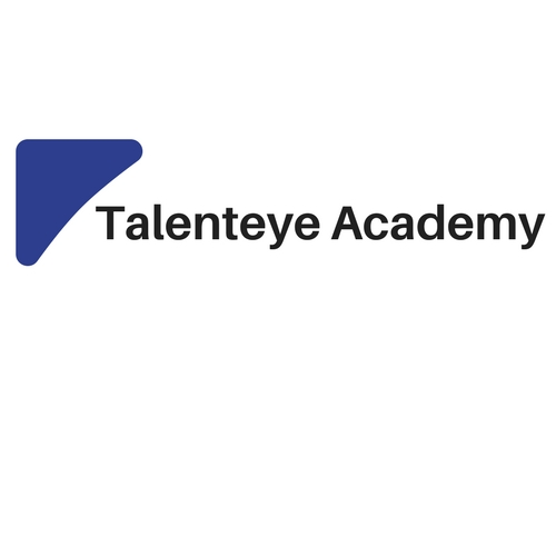 More about Talenteye Academy