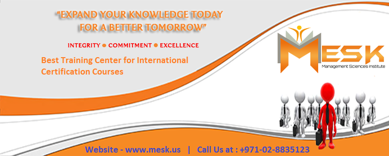 More about Mesk Management Institute