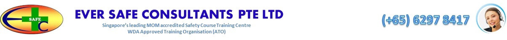 More about EVER SAFE CONSULTANTS PTE LTD (Singapore)