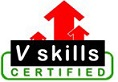 More about Vskills