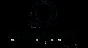 OmegaSoft Technologies Pune
