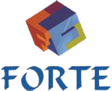 Forte IT Solutions