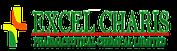 Excel Charis Pharmaceutical Chemical Ltd