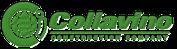 Conllavino Construction Group