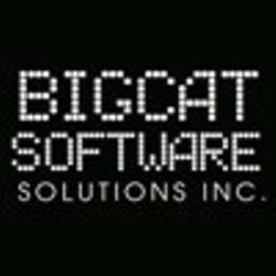 BIGCAT SOFTWARE SOLUTIONS INC