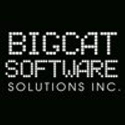 BIGCAT SOFTWARE SOLUTIONS INC