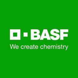 Vegetable Seeds BASF
