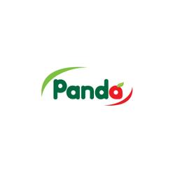 Panda Retail Company