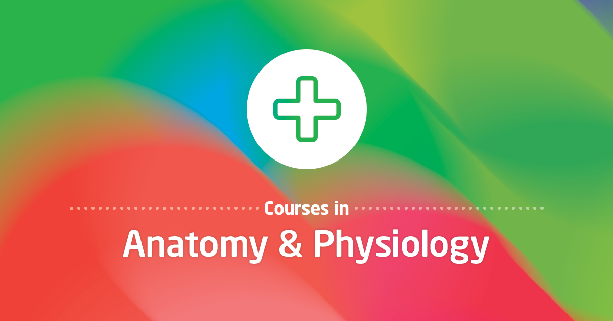 Anatomy and Physiology Courses in Singapore - Laimoon.com